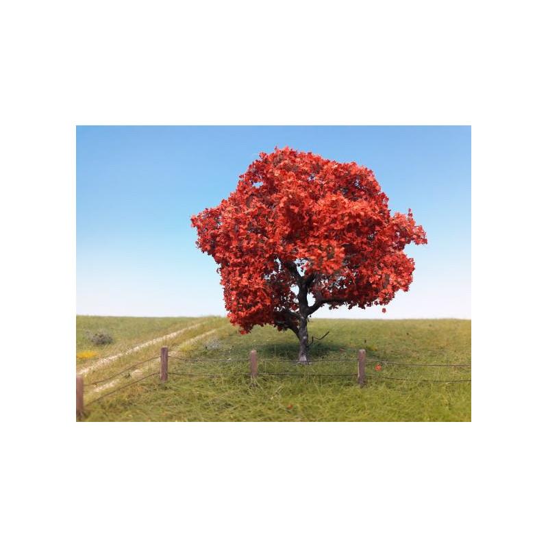 Erable rouge - H0