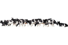 Vaches - Z